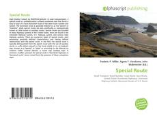 Bookcover of Special Route