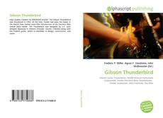 Gibson Thunderbird的封面
