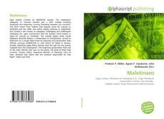 Capa do livro de Maletinazo