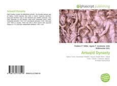 Artuqid Dynasty kitap kapağı