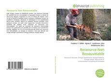 Couverture de Ressource Non Renouvelable