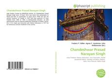 Bookcover of Chandeshwar Prasad Narayan Singh
