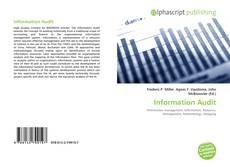 Information Audit kitap kapağı