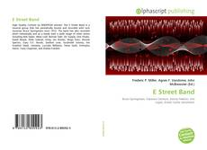 Bookcover of E Street Band