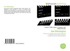 Bookcover of Joe Mantegna
