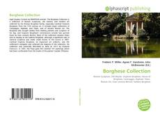 Bookcover of Borghese Collection