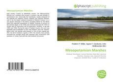 Mesopotamian Marshes kitap kapağı