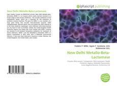 Bookcover of New Delhi Metallo-Beta-Lactamase