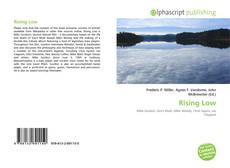 Bookcover of Rising Low