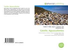 Обложка Calvillo, Aguascalientes
