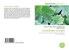 In November Sunlight的封面