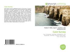 Bookcover of Cave Survey