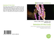 Bookcover of Boleslaw IV the Curly