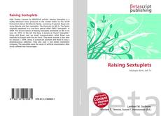 Raising Sextuplets kitap kapağı