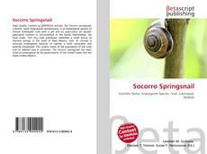 Buchcover von Socorro Springsnail