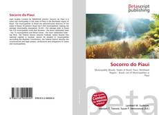 Buchcover von Socorro do Piauí
