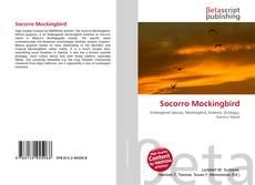 Copertina di Socorro Mockingbird