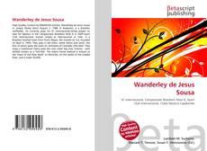 Bookcover of Wanderley de Jesus Sousa
