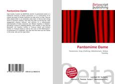 Bookcover of Pantomime Dame
