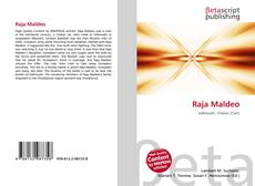 Capa do livro de Raja Maldeo