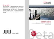 Bookcover of Sodom Lake