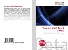 Обложка Yucatan Small-Eared Shrew
