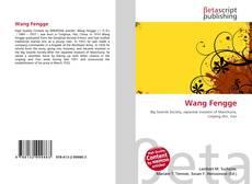 Capa do livro de Wang Fengge
