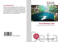 Bookcover of East Okoboji Lake