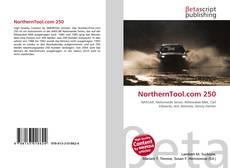 Bookcover of NorthernTool.com 250