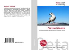 Papyrus Gonolek的封面