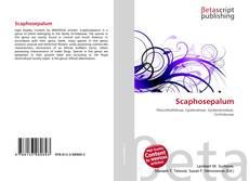 Bookcover of Scaphosepalum