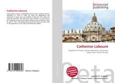 Catherine Labouré的封面
