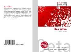 Bookcover of Raja Sálbán