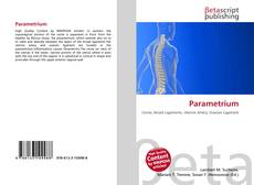Bookcover of Parametrium
