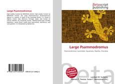 Bookcover of Large Psammodromus