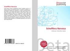 Bookcover of Schefflera Nervosa
