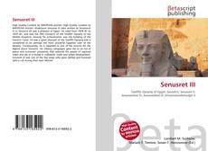 Borítókép a  Senusret III - hoz