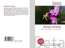 Bookcover of Bombus Terrestris