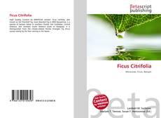 Borítókép a  Ficus Citrifolia - hoz