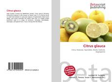 Bookcover of Citrus glauca