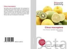 Bookcover of Citrus macroptera