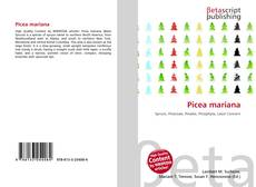 Bookcover of Picea mariana