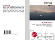 Capa do livro de Chrysococcyx