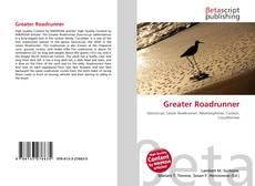 Bookcover of Greater Roadrunner