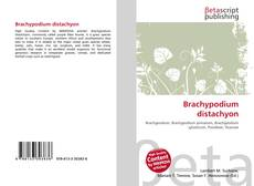Bookcover of Brachypodium distachyon