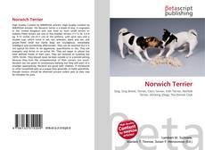Обложка Norwich Terrier