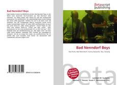 Buchcover von Bad Nenndorf Boys