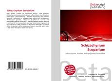Bookcover of Schizachyrium Scoparium