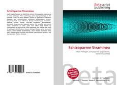 Bookcover of Schizoparme Straminea