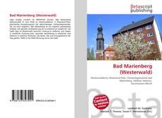 Buchcover von Bad Marienberg (Westerwald)